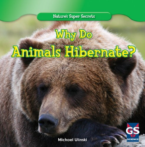 Why Do Animals Hibernate? (Nature's Super Secrets)