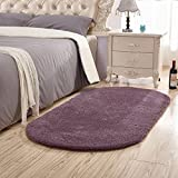 SANMU Soft Velvet Silk Rugs Simple Style Modern Oval Shaggy Carpet Fashion Bedroom Mat for Dining Living Room Rugs for Girls Room Home Decor 2.6' X 5.3' Grey-purple