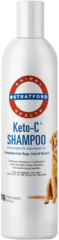 Stratford Pharmaceuticals Keto C Champú Medicado Clorhexidina Con Ketoconazol Antibacteriano Y Antifúngico Para Perros Gatos Y Caballos Pepino Melón 16 Oz Health Personal Care