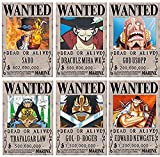REAL-LISTIC One Piece Wanted Poster