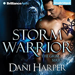 Storm Warrior Hörbuch