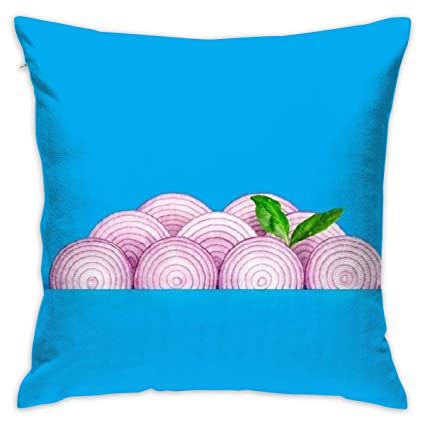 Amazon.com: BZSPYES Funny Onions 18x18 Inch Home Decor Throw ...
