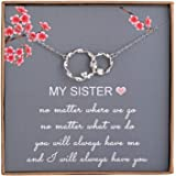 Sister Gifts from Sister - Sterling Silver Interlocking Infinity 2 Circles Necklace for Sisters, Birthday Jewelry Friendship