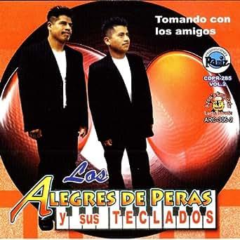 Mi Guitarra Electrica by Los Alegres Y Sus Teclados Magicos on ...