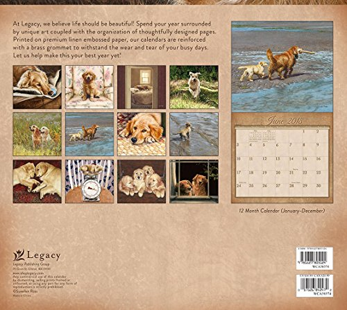 Legacy Publishing Group 2018 12-Month Wall Calendar, Goldens Photo #3