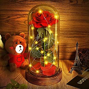 Beauty and The Beast Rose, Red Silk Rose That Lasts Forever in a Glass Dome with LED Lights,Gift for Valentine's Day Wedding Anniversary Birthday 5