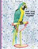 2018 - 2020 Three Year Planner: 2018-2020 Monthly Schedule Organizer - Agenda Planner for the Next Three Years/36 months calendar ? 8.5 x 11 inches ... (3 year Diary/3 year Calendar/Logbook)