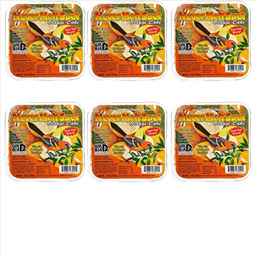 Cake Orange Suet - 6 Pack Pine Tree Farm's Never Melt Suet Orange Cake 12 oz. 3012 Made in USA