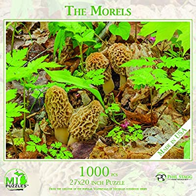 The Morels - 1,000 Piece MI Puzzles Jigsaw Puzzle: Toys & Games