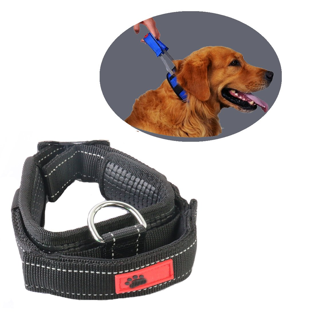 Black M Black M Comfort Padded Dog Collar by Schnappy,Nylon Webbing Pet Sports Dog Tag Collar with Convenient Retractable Leash for Walking (M, Black)