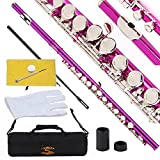 Glory Closed Hole C Flute With Case, Tuning Rod and Cloth,Joint Grease and Gloves-Pink Color