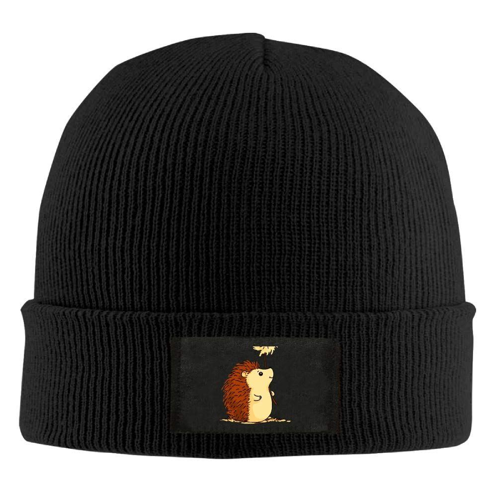 DLOAHJZH-Q Adult Unisex Hedgehog Cartoon Outdoor Wool Cap