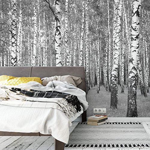 102 Fleece - Birch Wall Mural - Premium Fleece Wallpaper - Large - on roll - 137x102 Inches - incl. wallpaper glue - Wall-Art US