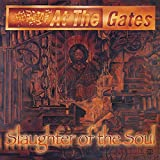 Slaughter Of The Soul (Metal Matters limited edition red FDR vinyl.)