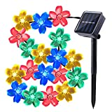Qedertek Solar String Lights Cherry Blossom, 23ft 50 LED Waterproof Outdoor Decoration Lighting for Indoor/Outdoor, Patio, Lawn, Garden, Christmas, and Holiday Festivals (Multi-color)