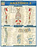 Anatomy 2, BarCharts Inc., Staff, 1572228563
