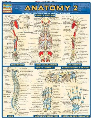 Anatomy 2 (Quick Study Academic): Inc. BarCharts: 0654614208569 ...