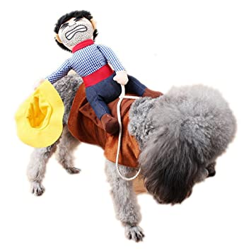 aaa226 Riding Horse Pet Outfit mit Cowboy Hat Hundemantel Halloween ...