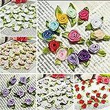 100 PCS Mini Ribbon Bows Roses Flowers Craft