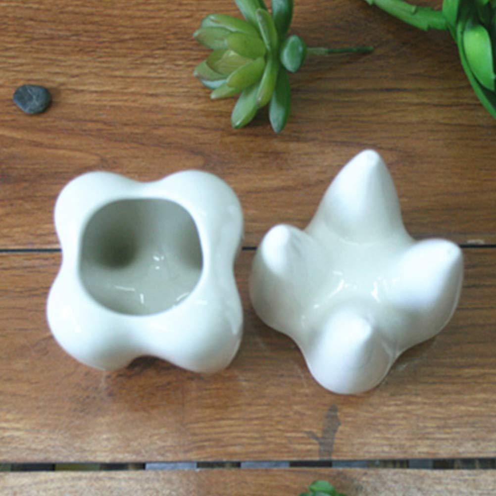 Vosarea 2 St/ück Z/ähne Keramik Blumentopf Pflanztopf Sukkulente Kaktus T/öpfe Stiftek/öcher Stiftbecher f/ür Schreibtisch B/üro Deko(Wei/ß)