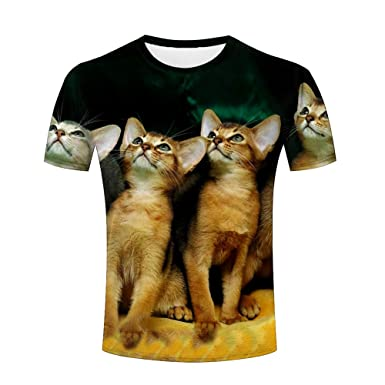 7a53507d168b Amazon.com  WENZENGZHANG Mens Casual 3D t-shirts cute cats animals design  unisex Summer Tops  Clothing