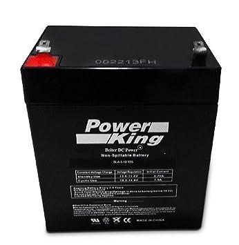 Amazon.com: Enersys 12 V 4,5 Ah Sla Batería recargable para ...
