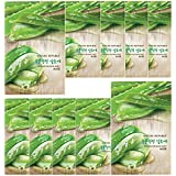 Nature Republic Real Nature Mask 10 Sheets for Skin Hydration (Aloe)