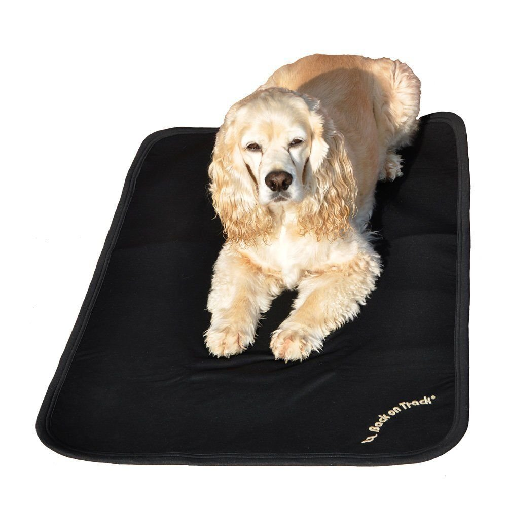 Back on Track Therapeutic Dog Crate Liner 34'' X 22'' (86 X 58 Cm)