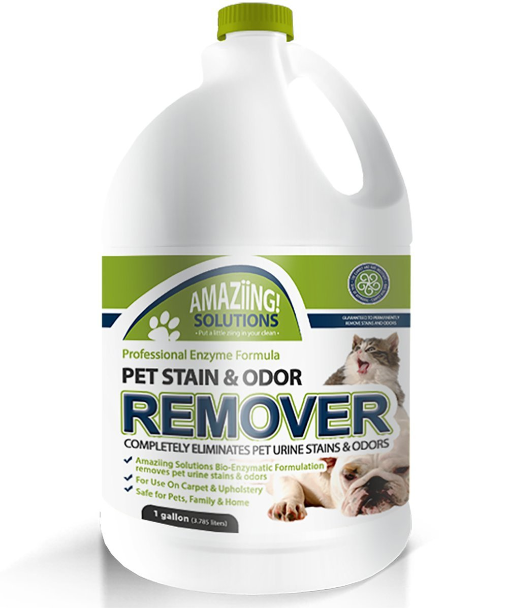Amaziing Solutions Pet Odor Eliminator and Stain Remover Carpet Cleaner for Dog Urine and Cat Pee, Professional Strength Enzymatic Solution, Natural Enzymes for Carpet and Hardwood Floors