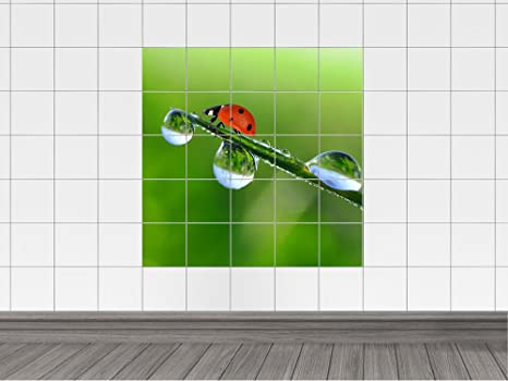 Graz design piastrelle adesivo piastrelle immagine coccinella su