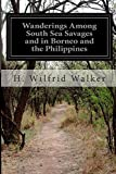 Wanderings among South Sea Savages and in Borneo and the Philippines, H. Wilfrid Walker, 1500143618