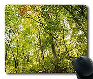 Beech Forest Mouse Pad Desktop Laptop Mousepads Comfortable Office Mouse Pad Mat Cute Gaming Mouse Pad by runtopwell