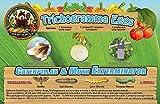Caterpillar & Moth Exterminator- Trichogramma 3 Squares/ 12,000 Eggs