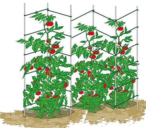 ecotrellis, ampliable Wave enrejado, enrejado, Pea pared de tomate ...
