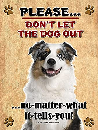 Australian Shepherd Aussie Shepherd Don T Let The Dog Out New 9x12 Realistic Pet Image Aluminum Metal Outdoor Dog Pet Sign Will Not Rust Sports Outdoors Amazon Com
