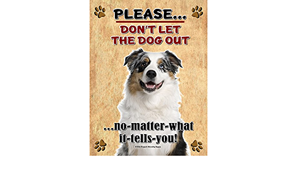 Amazon Com Australian Shepherd Aussie Shepherd Don T Let The Dog Out New 9x12 Realistic Pet Image Aluminum Metal Outdoor Dog Pet Sign Will Not Rust Sports Outdoors