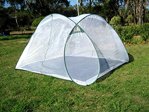 Pop up Mosquito Tent 7-8 People & Sansbug the best Amazon price in SaveMoney.es