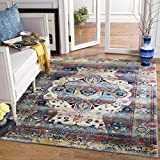 Safavieh Baldwin Collection BDN194C Slate Blue and Rust Vintage Oriental Area Rug (3'3 x 5′) Review