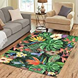 Cheap InterestPrint Watercolor Hummingbird Bird Area Rug Floor Mat 7′ x 5′ Feet, Tropical Butterfly Floral Flowers Plant Palm Banana Leaves Rayon Fiber Carpet Rugs for Home Living Dining Room Decoration