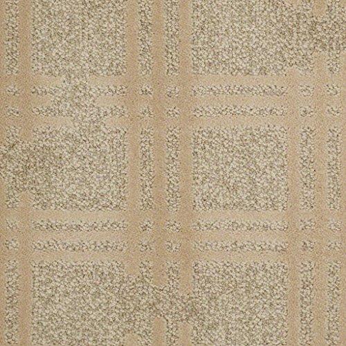 Off The Grid Pecan Bark Cut & Loop 45 oz Indoor Pattern Area Rug (11' Round)