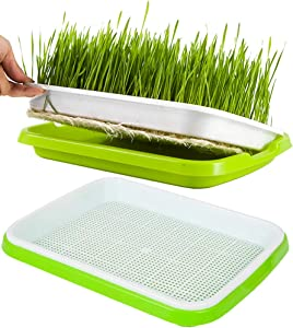 Seed Sprouter Tray,2 PCS Seed Germination Tray Healthy Wheatgrass Seeds Grower & Storage Trays for Garden Home Office 12.5x9.5x1.8 inch(LxWxH)