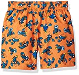 Kiko & Max Boys' Little Set with Short Sleeve