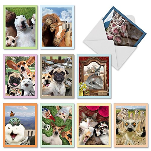 Animal Selfies - 10 Humorous Assorted Note Cards with Envelopes (4 x 5.12 Inch) - Blank All Occasion Pet Animal and Wildlife Greeting Card Set - Fun Photos of Cat, Dog, Monkey, Horse M2373OCBsl ()