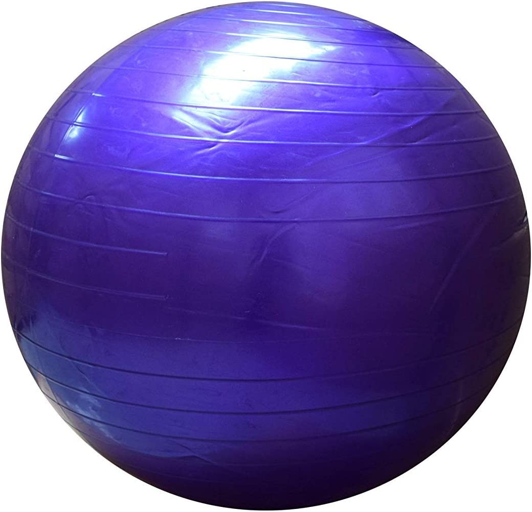 FitAndFun Pelota de Ejercicio Balon de Pilates Violeta ...