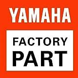Yamaha Speed Limiter Assembly