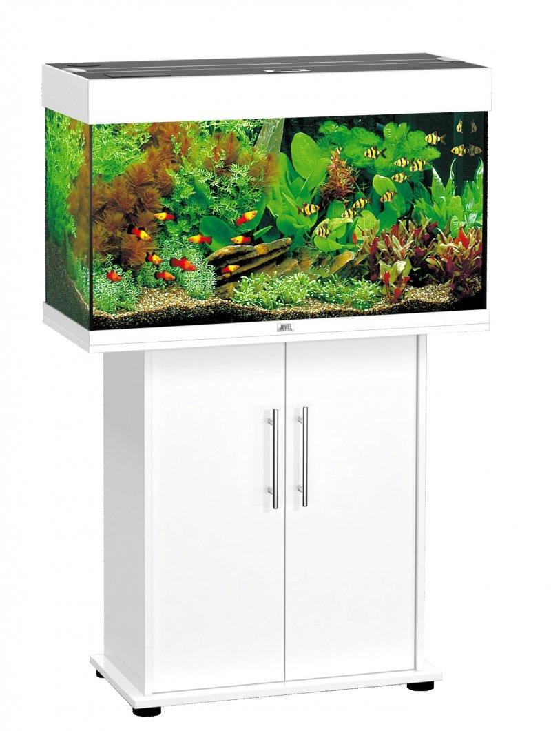 juwel aquarium 66440 unterschrank 80 sb fr rio 125 rekord 800 wei gnstig kaufen