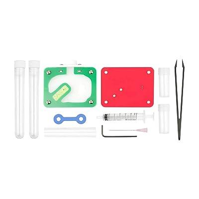 Aus Ants Acrylic Ant Farm Starter Kit: Toys & Games