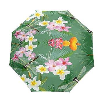 Amazoncom Lotus Flower Dragonfly Umbrella Travel Automatic Auto