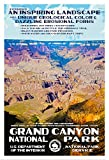 "Grand Canyon National Park Poster - Original Artwork - 13"" x 19"" by Rob Decker - WPA Style"