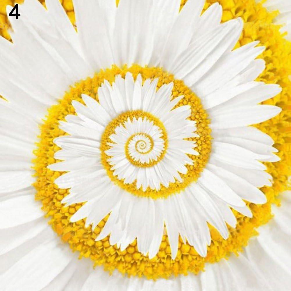 Rose Iris Tectorum Sunflower Cobaea Scandens Seed, 100Pcs Beautiful Miracle Daisy Rare Ornamental Garden Flowers Plant Bonsai Seeds - 4#